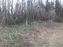 Holzfällen