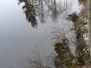 Waldviertelurlaub 2008